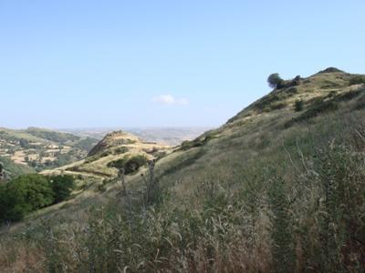 SicileVue générale du site de Terravecchia (Sicile, cl. 2008)